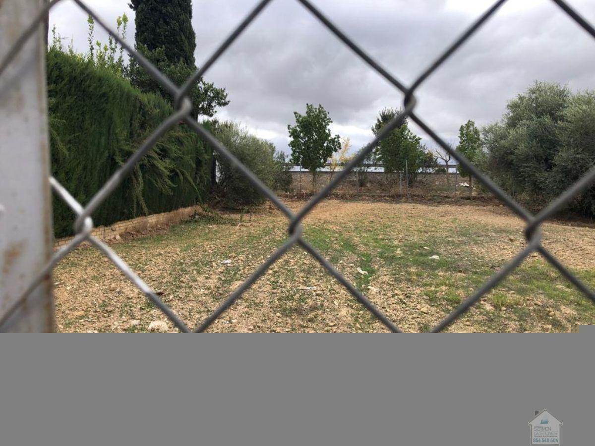 For sale of land in Valencina de la Concepción