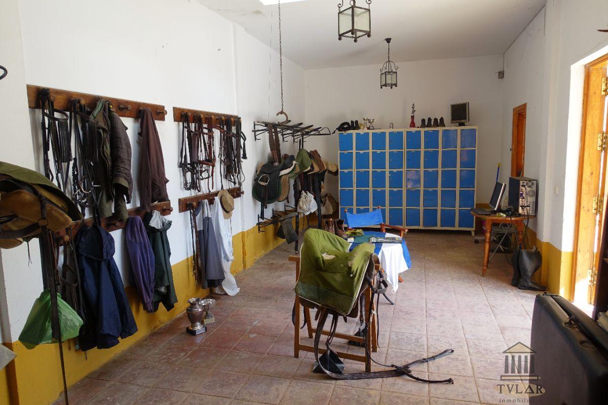 For sale of rural property in El Puerto de Santa María