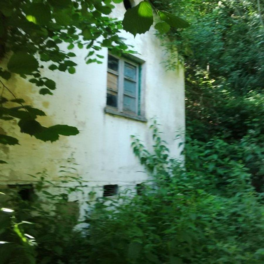 For sale of house in Aller