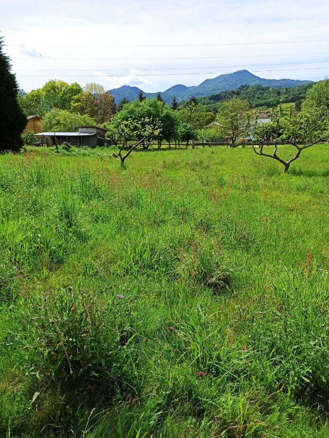 For sale of land in Nava