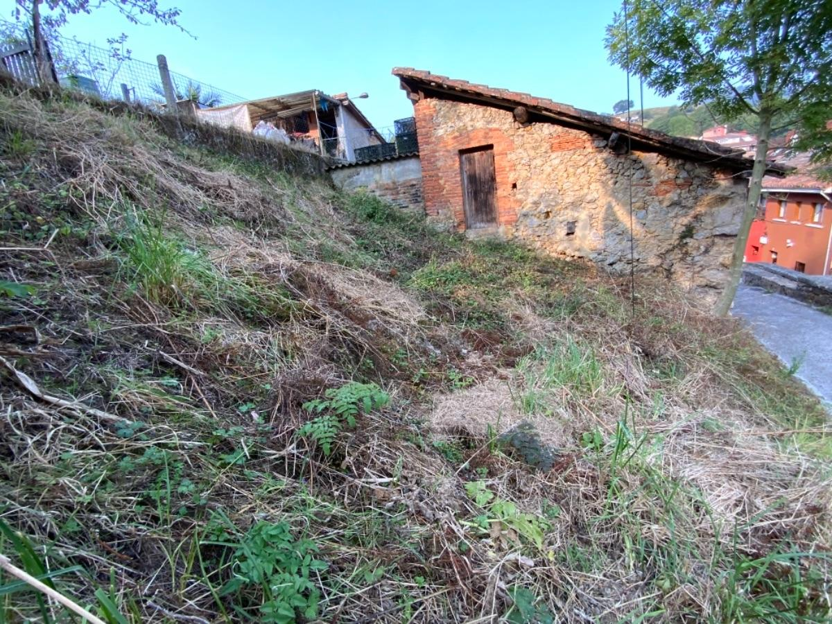 Venta de finca rústica en Piloña