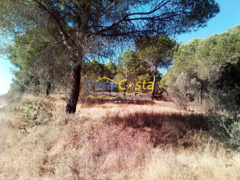 For sale of land in Isla Cristina