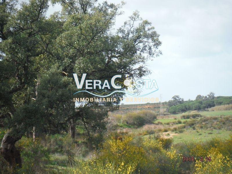Venta de finca rústica en La Redondela