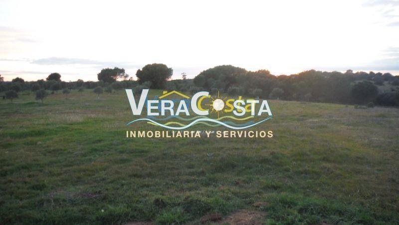 Venta de finca rústica en Isla Cristina