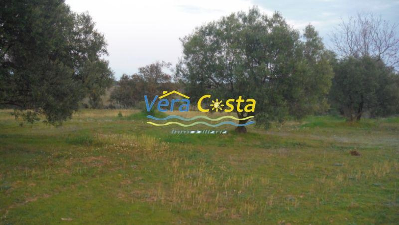 For sale of rural property in Villablanca