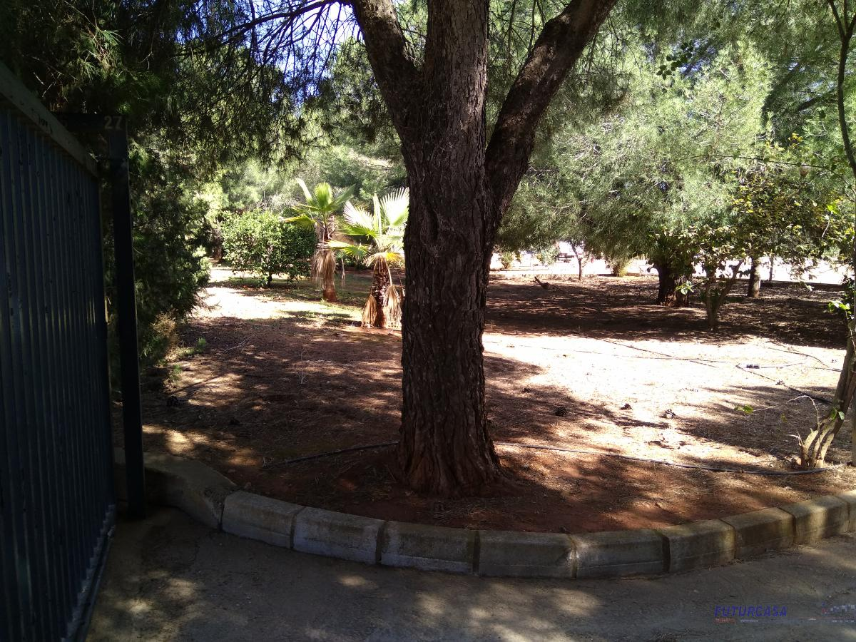 Venta de chalet en Sevilla