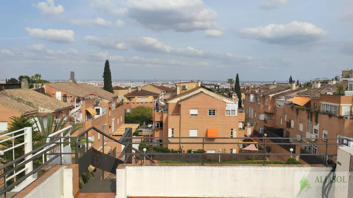 For rent of flat in Tomares