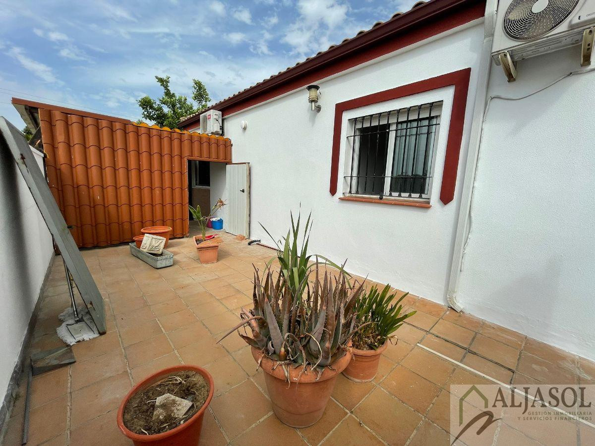 For sale of house in Salteras