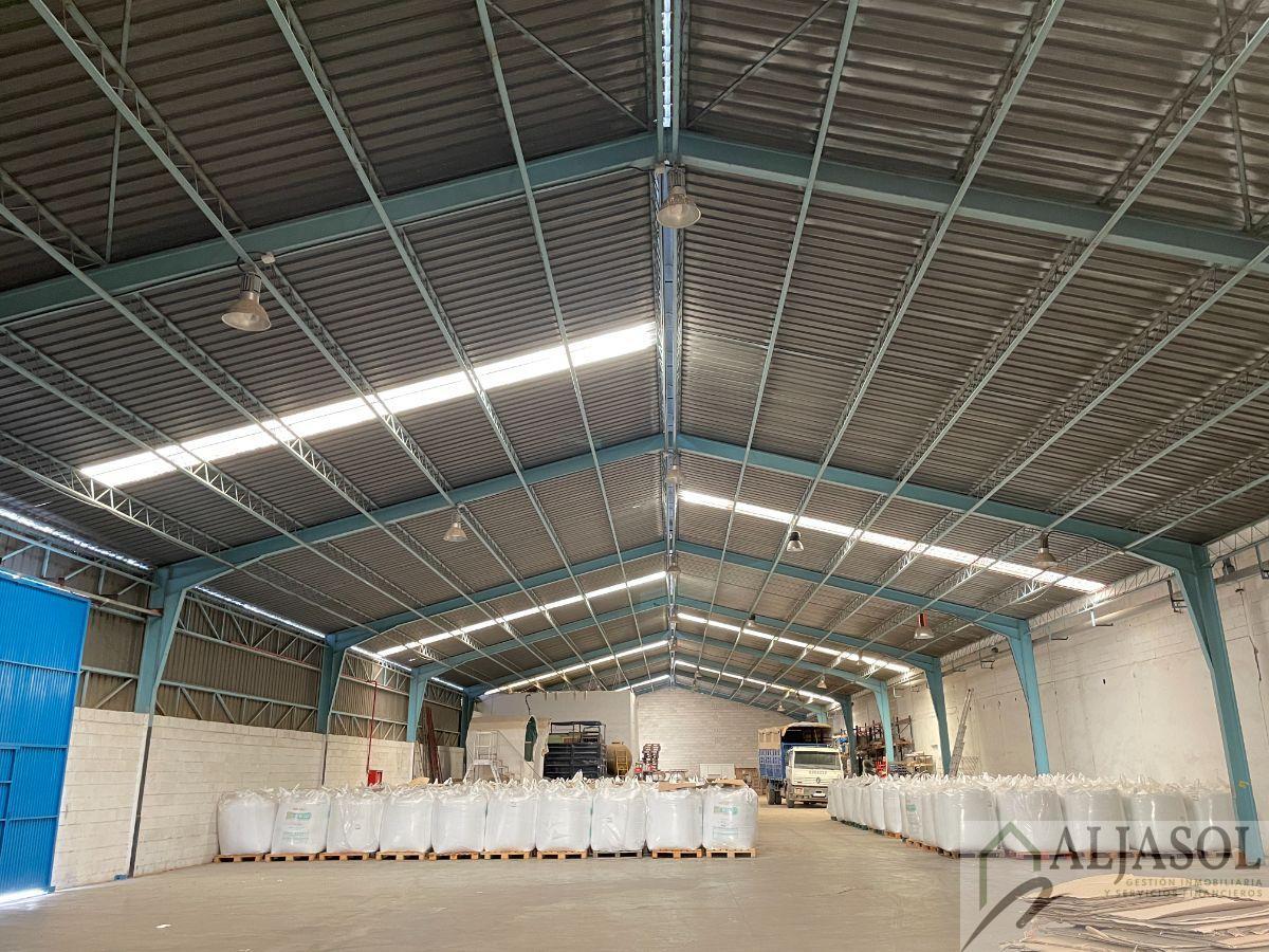Alquiler de nave industrial en Santiponce