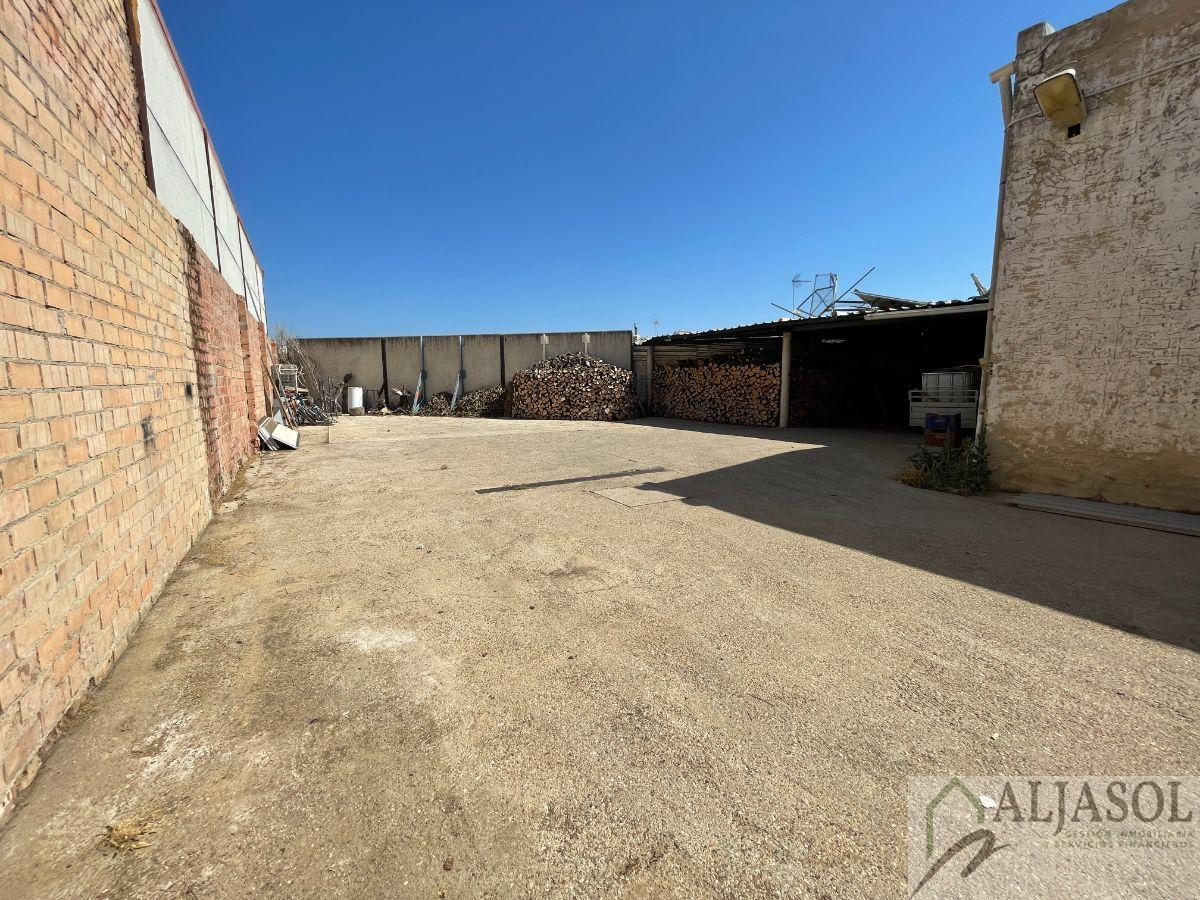 For sale of land in Umbrete