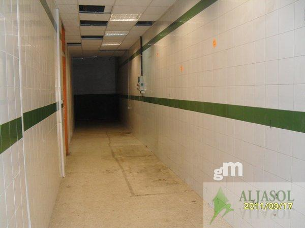 For rent of industrial plant/warehouse in Tomares