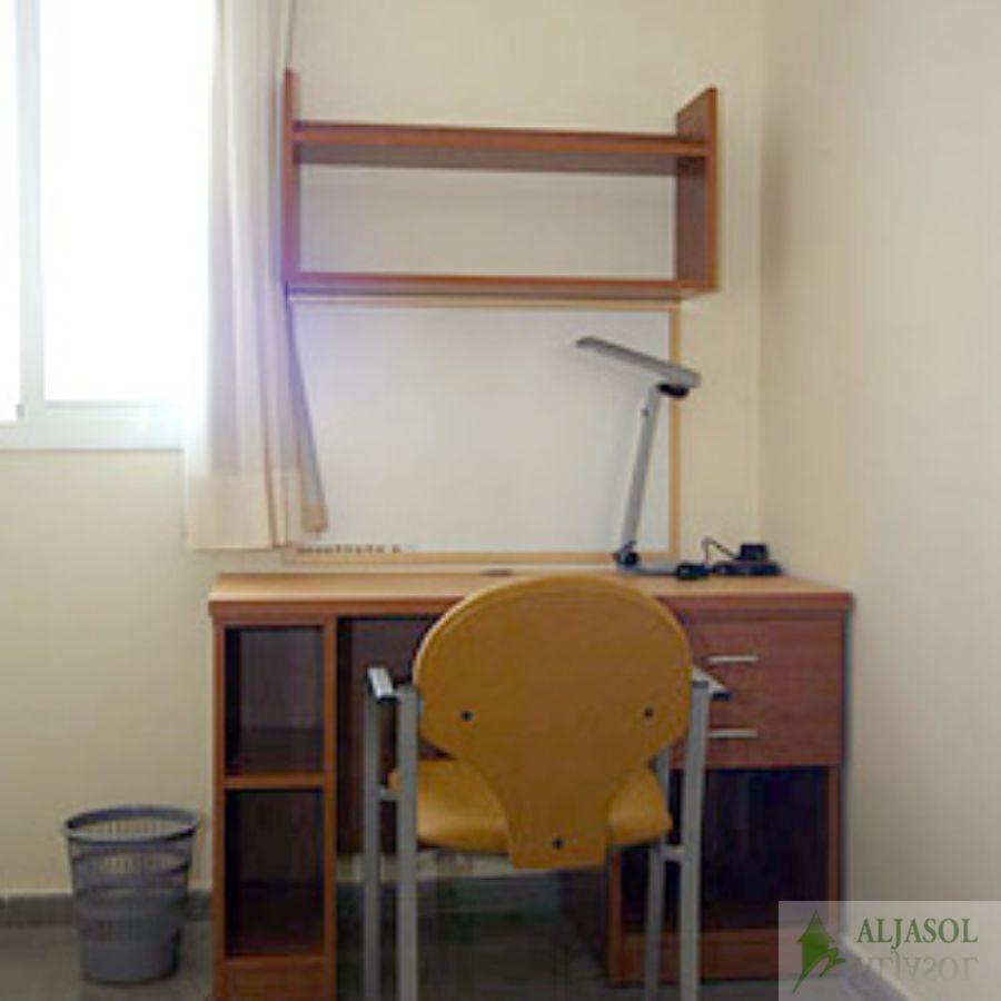 For rent of study in Bormujos