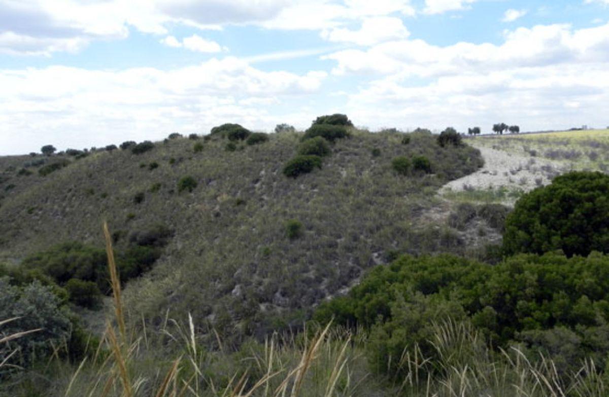 Venta de terreno en Morata de Tajuña