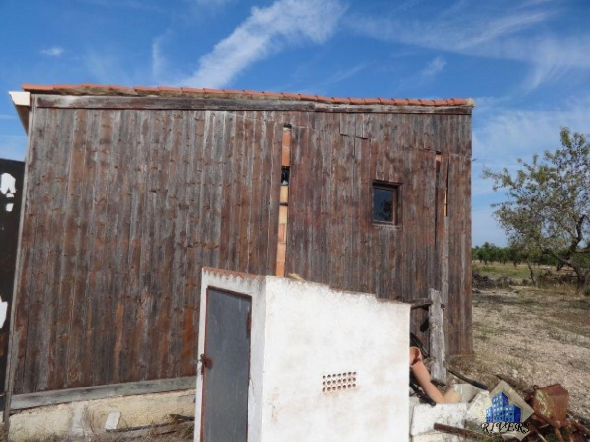 Venta de finca rústica en El Perello