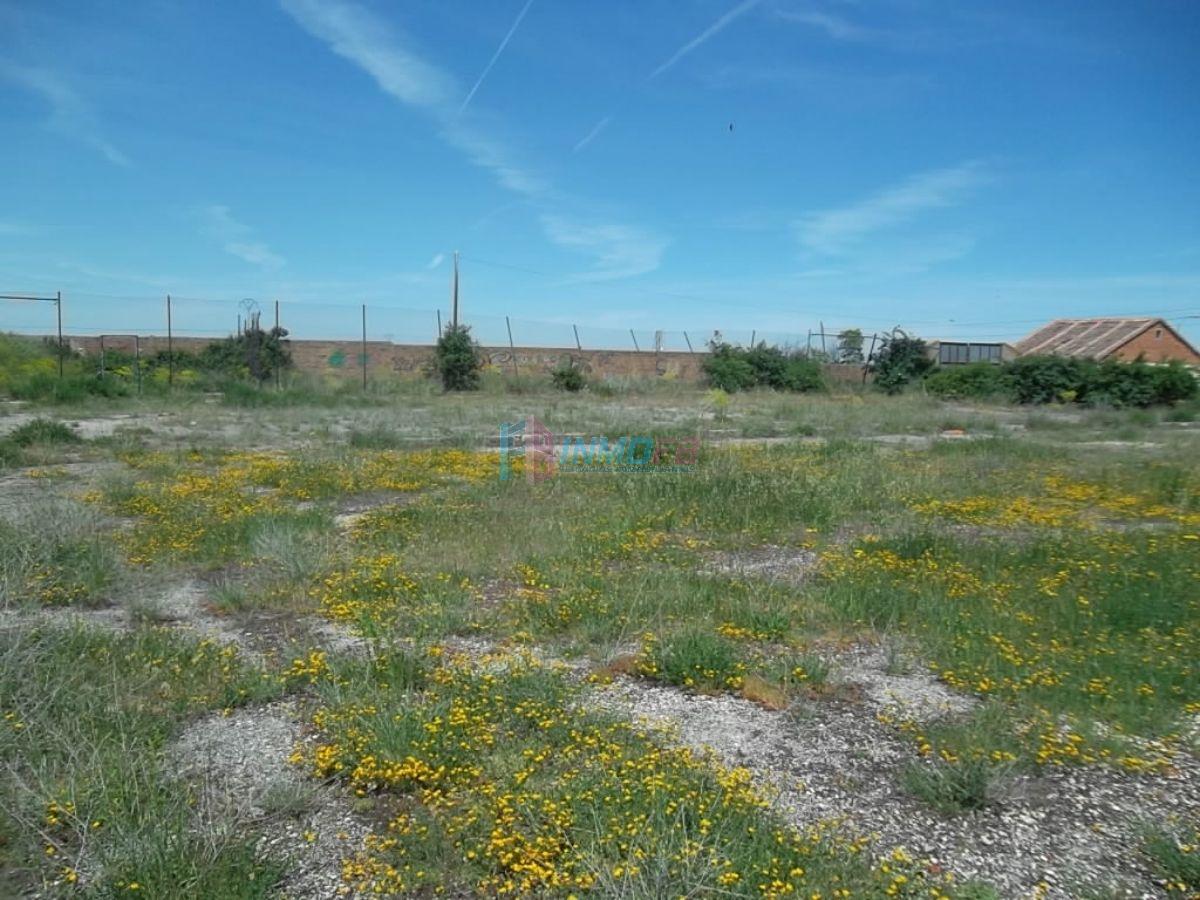 For rent of land in Palazuelos de Eresma
