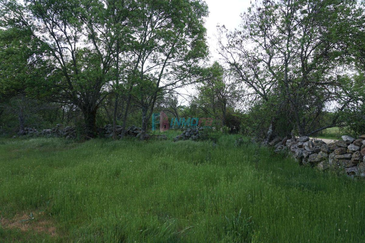For sale of land in Sotosalbos