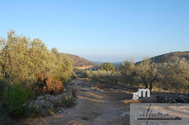 For sale of  in El Perello