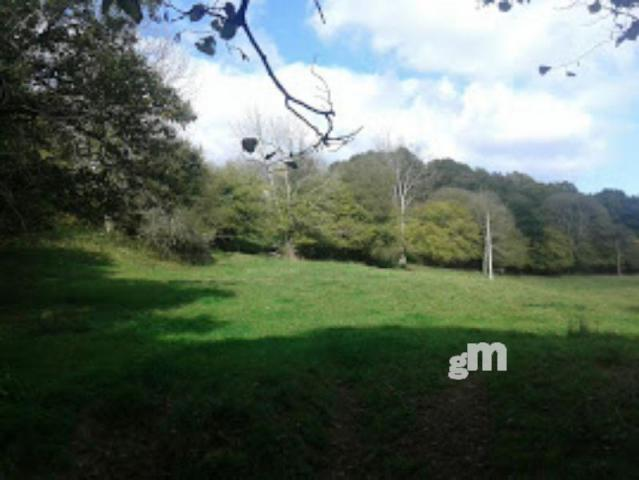 For sale of rural property in Piloña