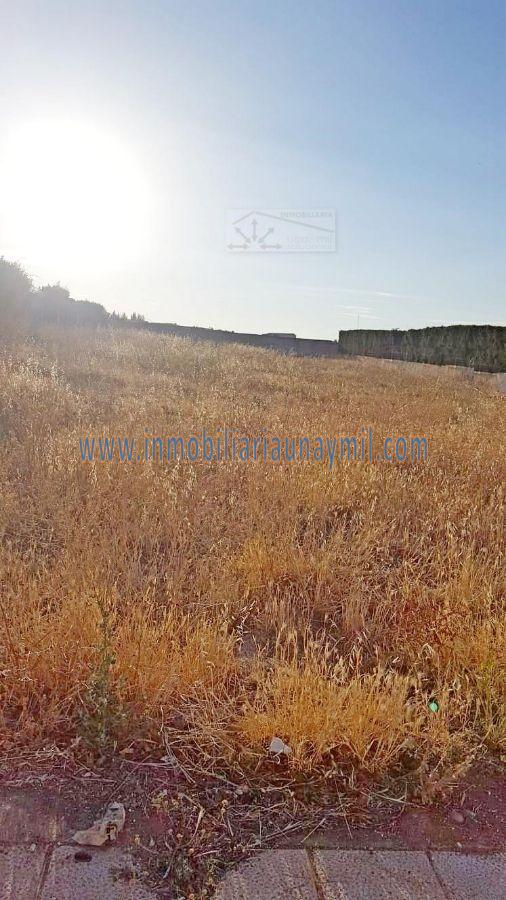 For sale of land in Aldeatejada