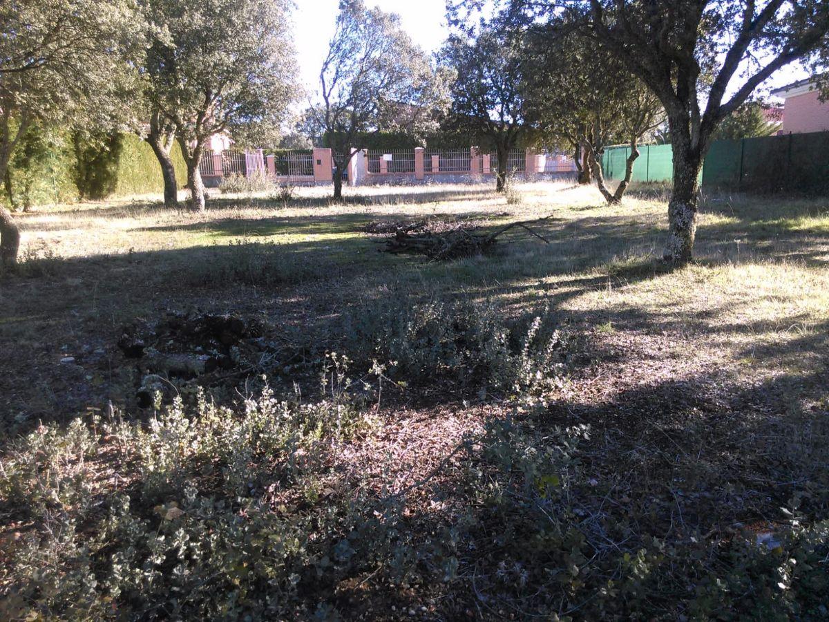 Venta de terreno en Martinamor