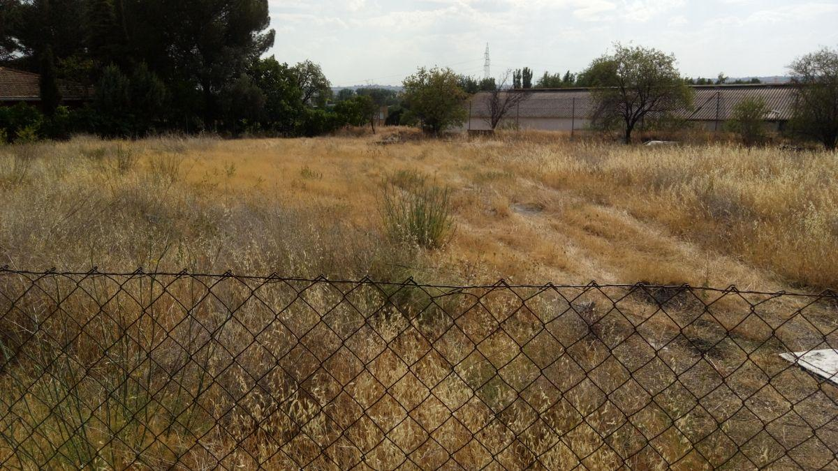 For rent of land in Madrid