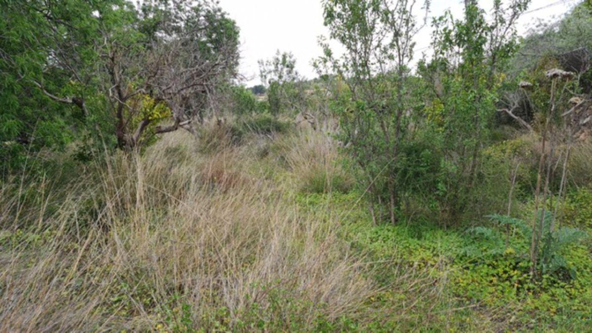 Venta de terreno en La Nucia