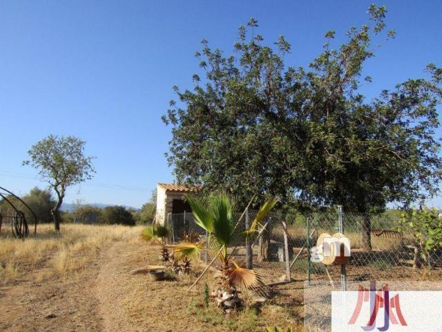 Venta de finca rústica en Palma de Mallorca