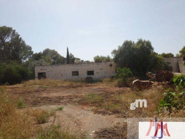 Vendita di terreno in Palma de Mallorca