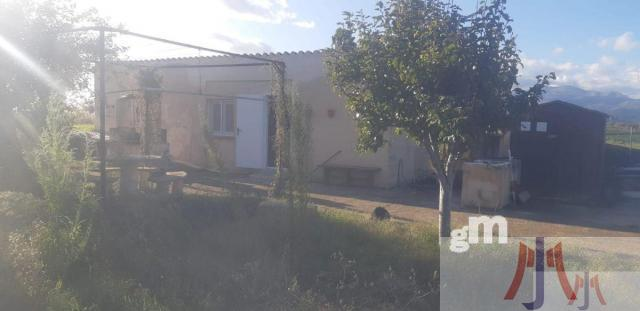 For sale of land in Muro