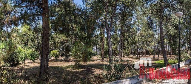 For sale of land in Las Torres de Cotillas