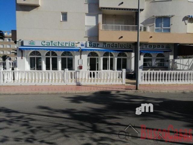 Venta de local comercial en Guardamar del Segura