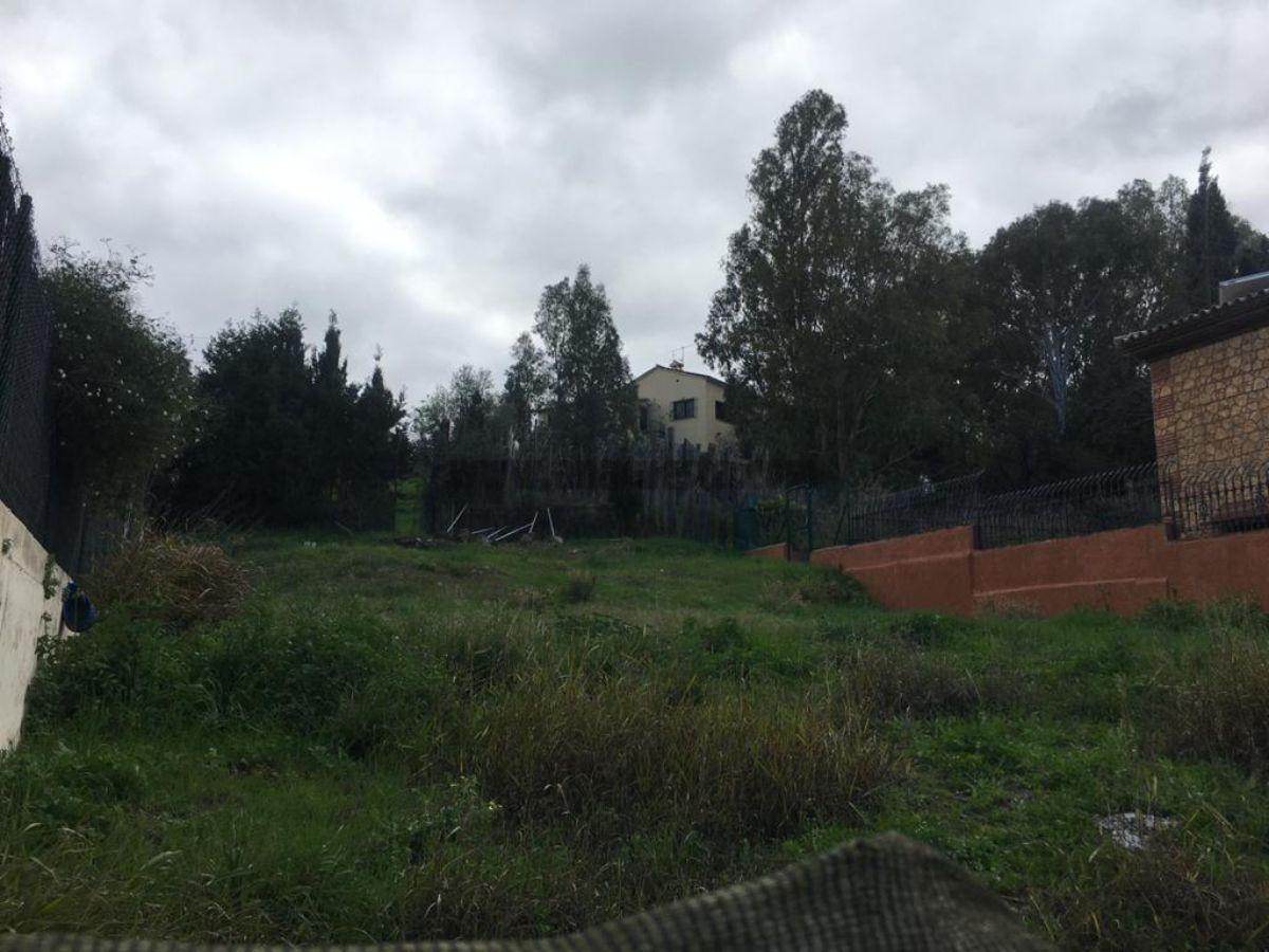 Vente de terrain dans San Pedro de Alcántara