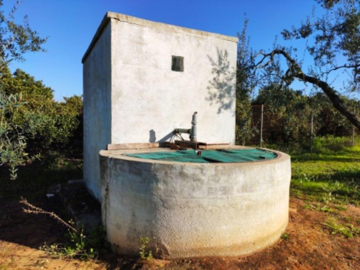 Venta de finca rústica en Huévar del Aljarafe