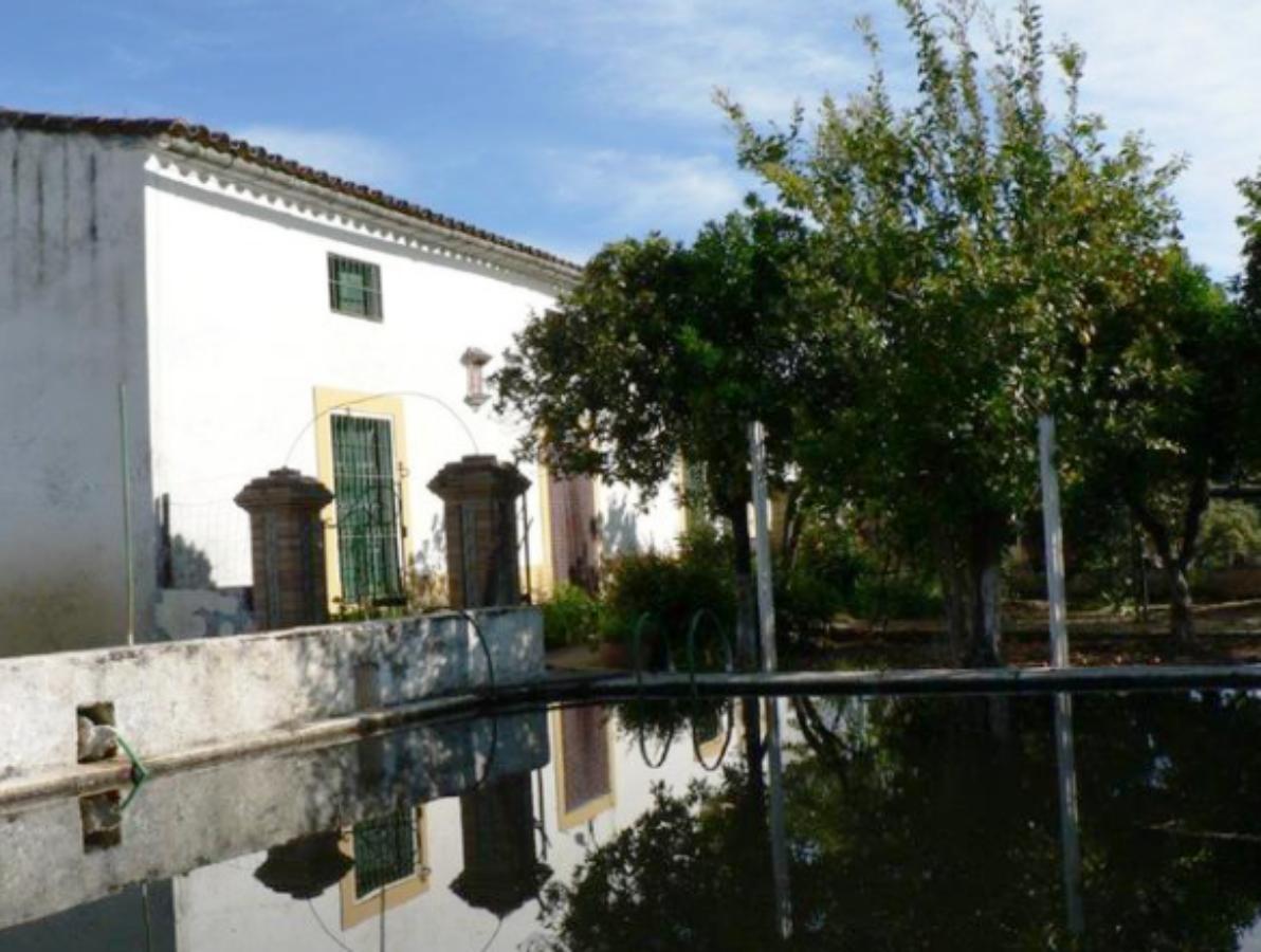 For sale of rural property in Aracena