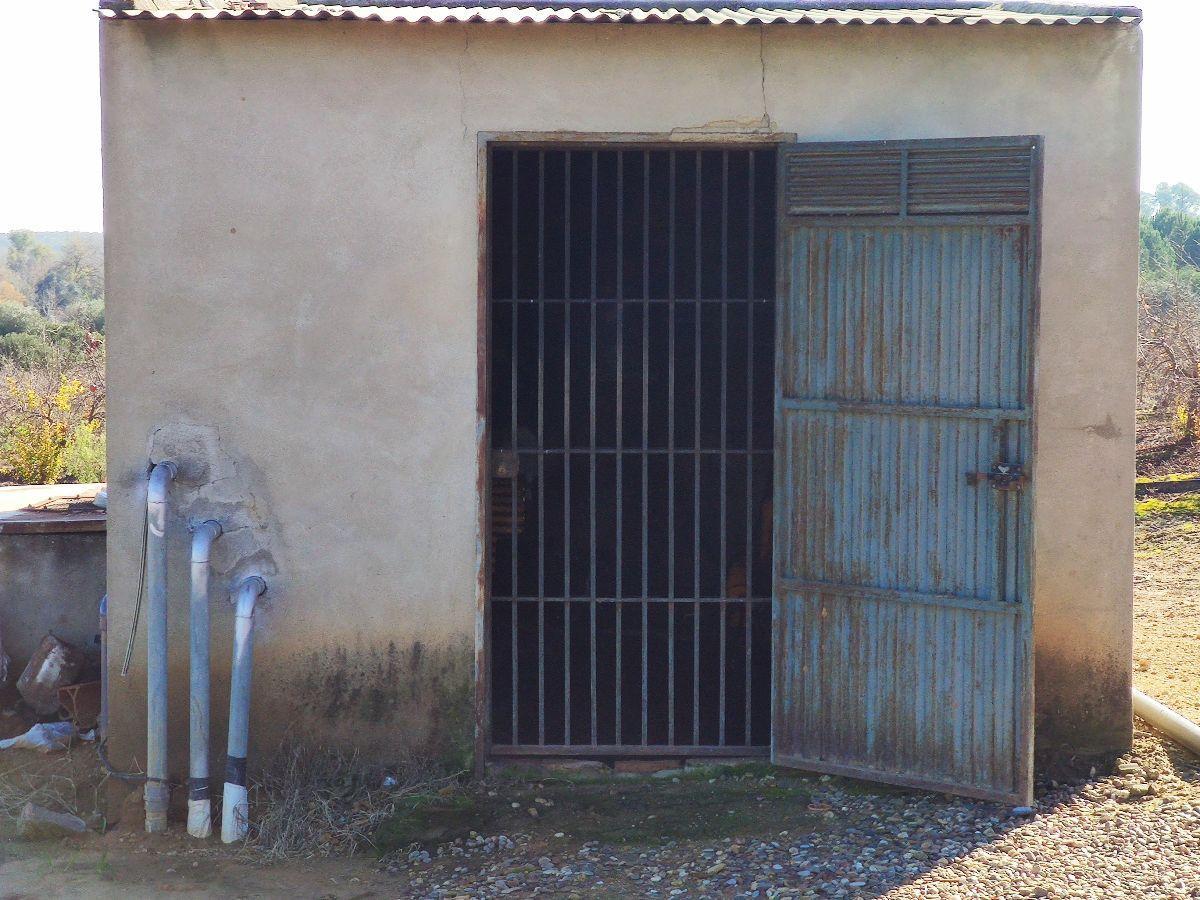 Venta de finca rústica en Aznalcázar