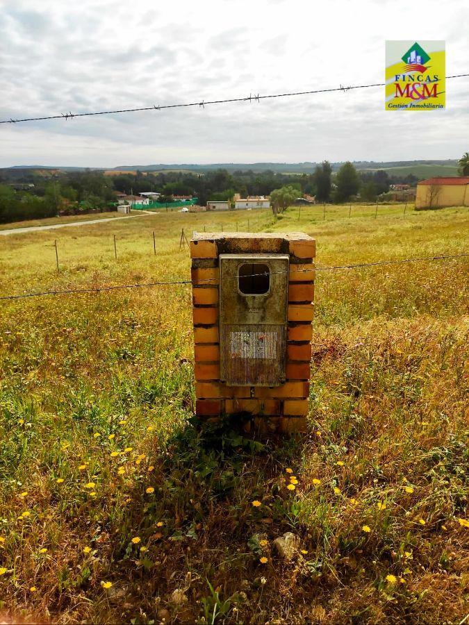 For sale of land in Sanlúcar la Mayor