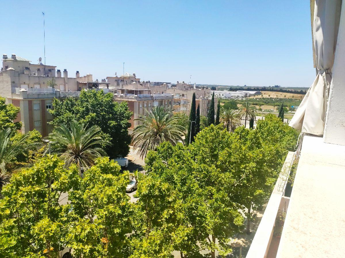 For sale of penthouse in Bormujos