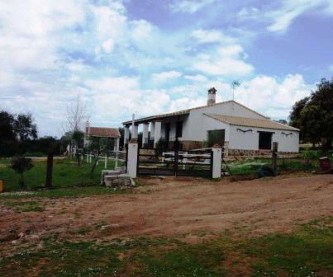 For sale of rural property in Zalamea la Real