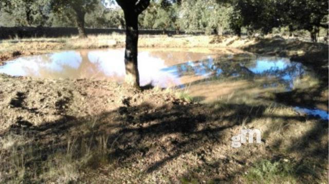For sale of rural property in Cortegana