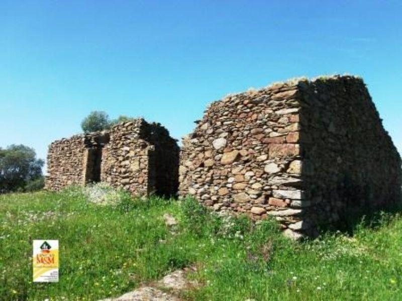For sale of rural property in Beas