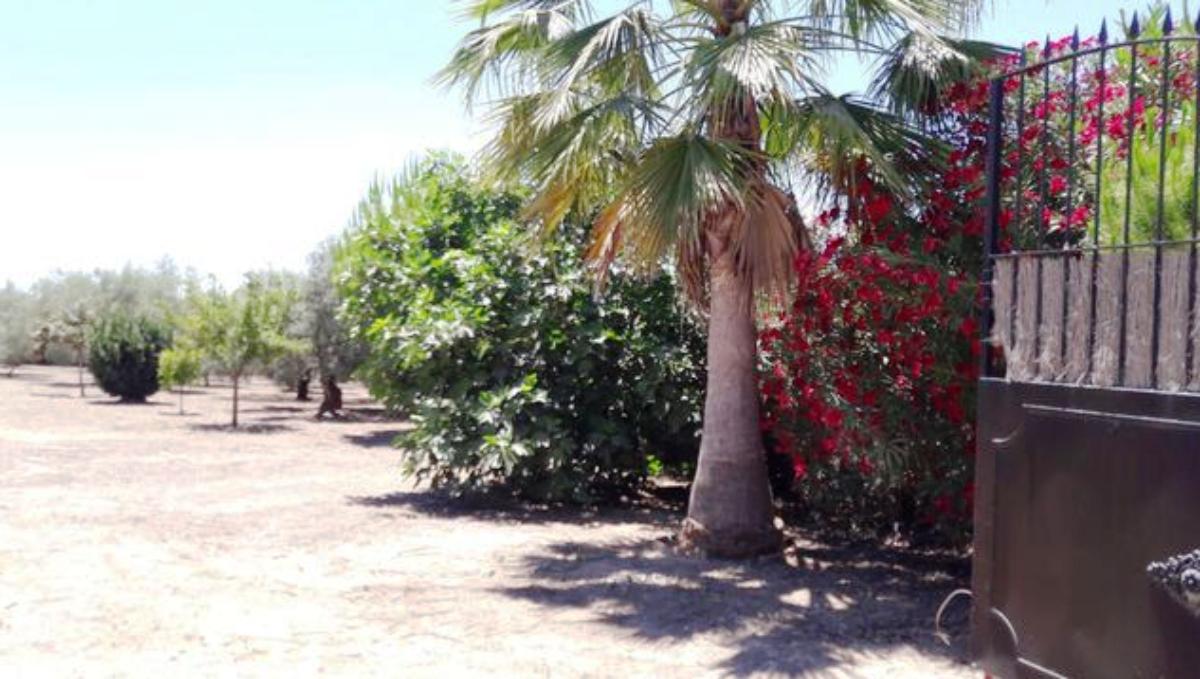 For sale of rural property in Aznalcázar