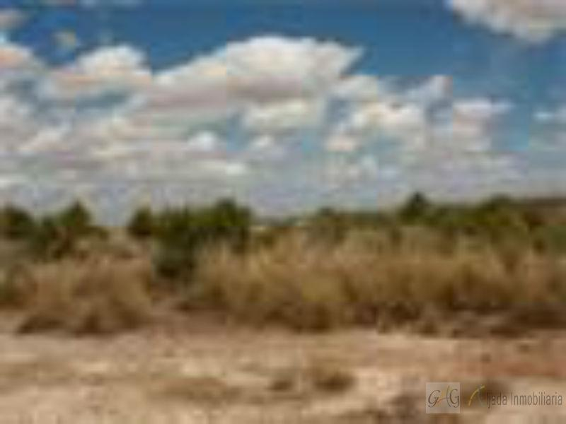 For sale of land in Barajas de Melo