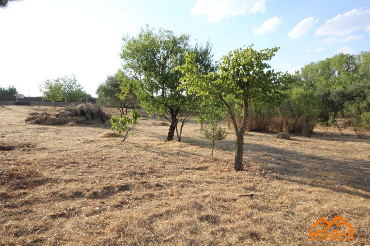 For sale of land in Ribatejada