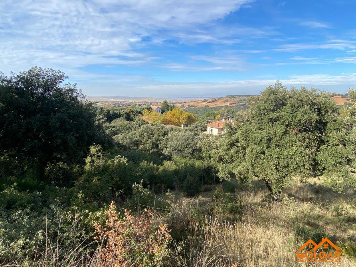 For sale of land in Valdeaveruelo