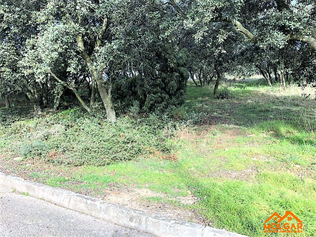 For sale of land in El Casar
