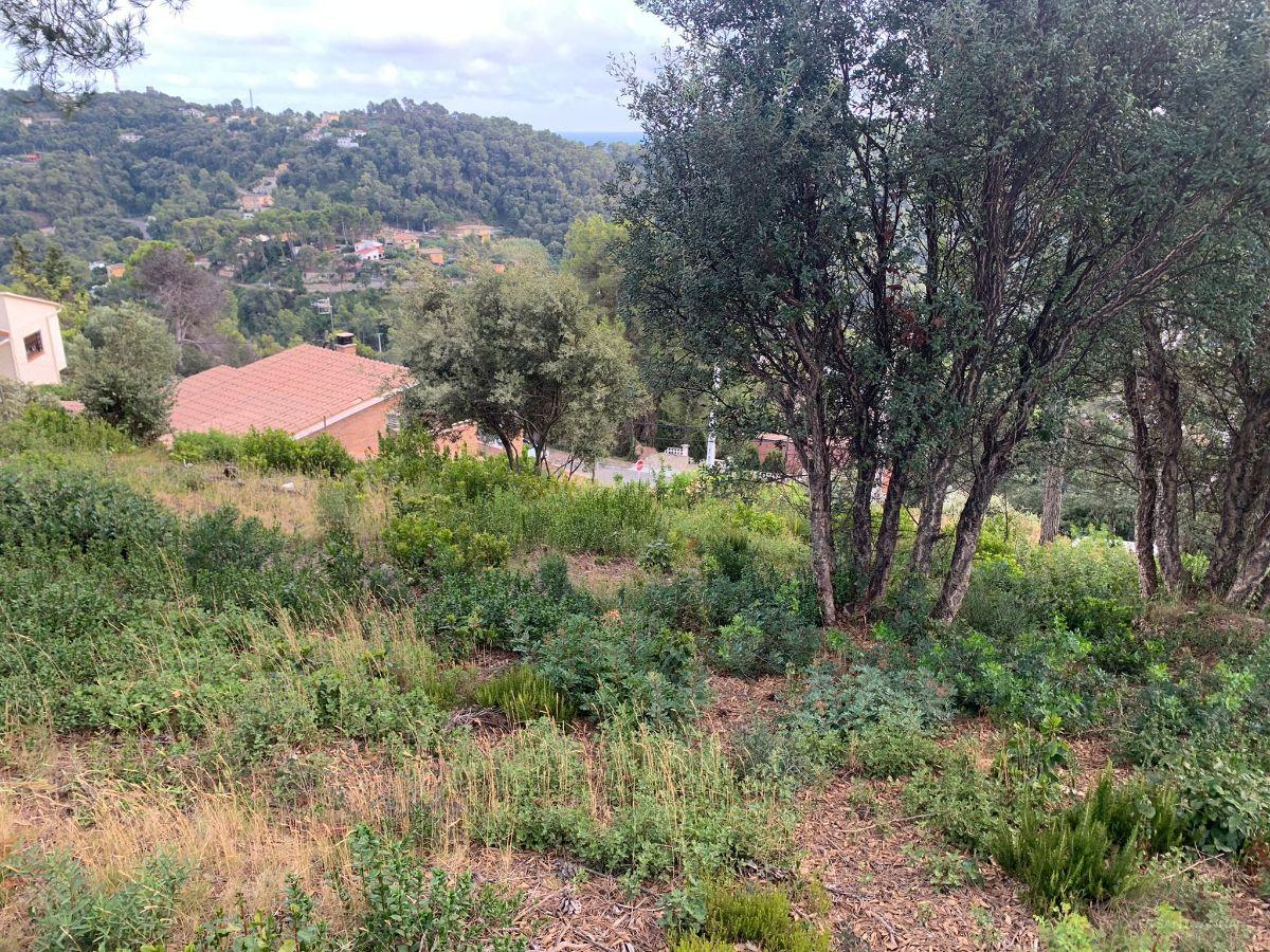 For sale of land in Palafolls