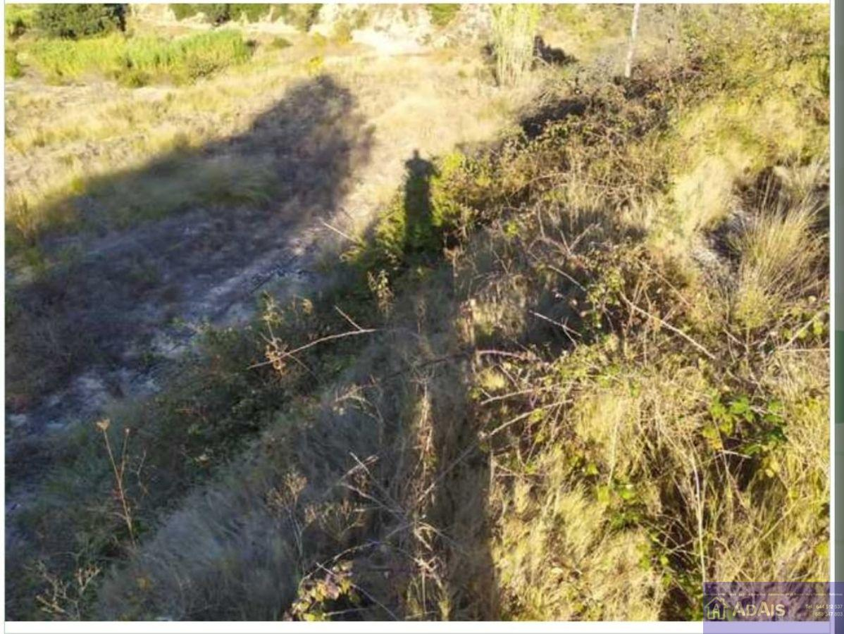 For sale of land in Valencia