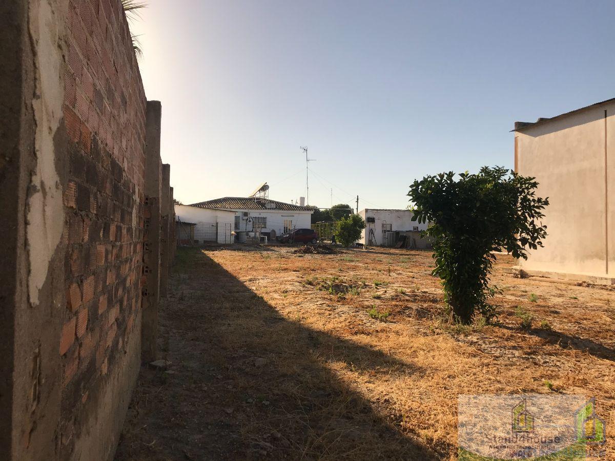 Venta de finca rústica en Hinojos