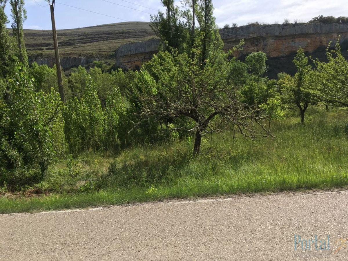 For sale of land in Burgos