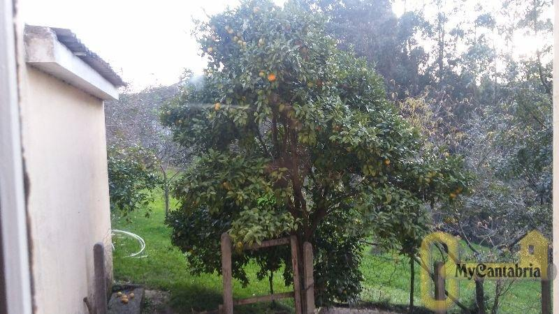 For sale of house in Polanco